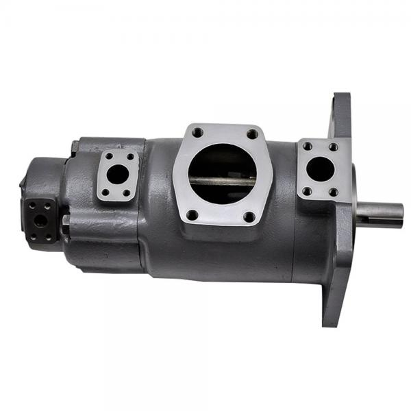 Yuken PV2R12-10-65-L-RAA-40 Double Vane pump #1 image