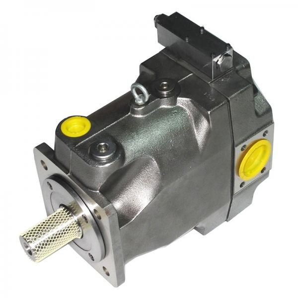 PAKER F11-010-MV-SV-K-000-000-0 Piston Pump #2 image